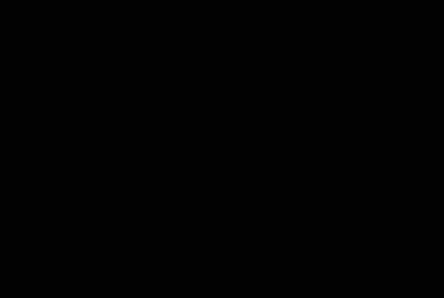 Bernard Remy Logo