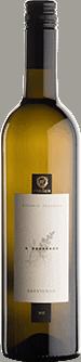 Sauvignon vino Frešer